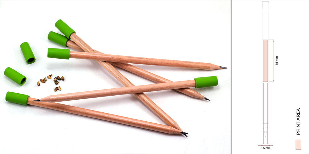 Wooden Pencil with Eraser and Seed